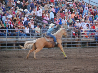 Livingston, Montana, rodeo