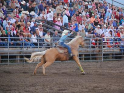 Livingston, Montana, rodeo