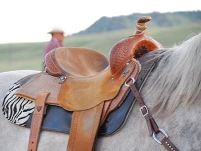 Montana saddle